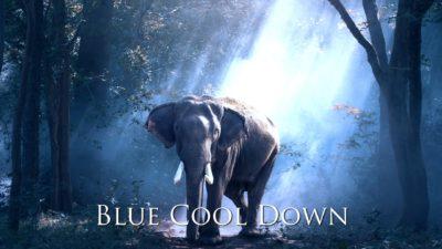 BlueCoolDownプリセット